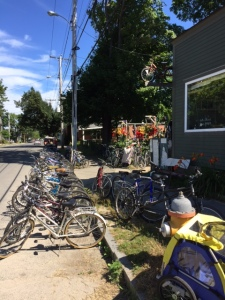 Brads Bikes Peaks Island
