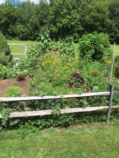 Road and Snack - Veggie and Flower Garden