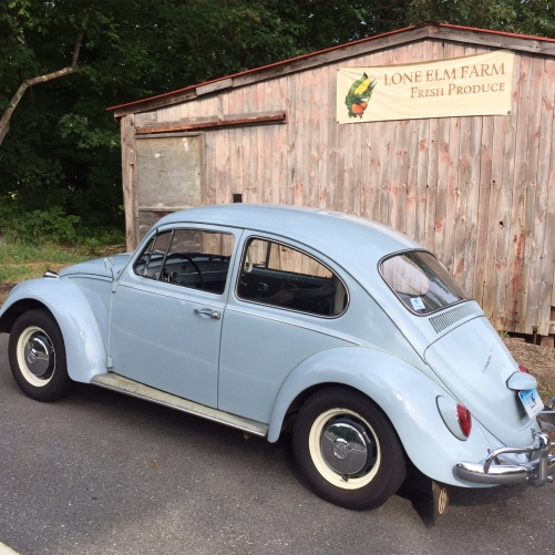 Road and Snack - Robins Egg Blue VW Beetle
