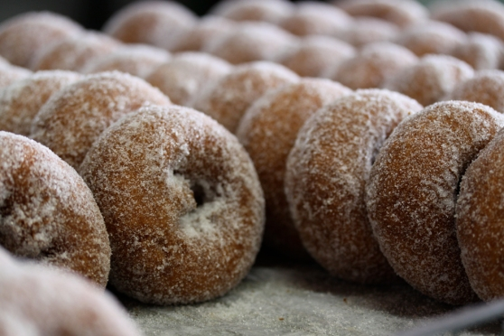 Apple Cider Donuts Rogers Orchards